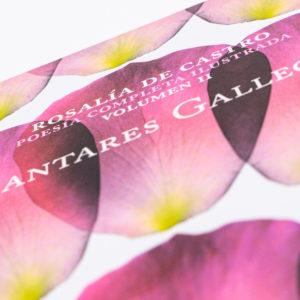 """""""Cantares Gallegos"""" de Rosalía De Castro"""